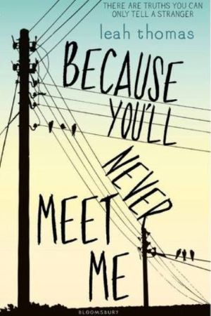 Book cover - Because You'll Never Meet Me by Leah Thomas